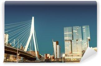 Vinylová Fototapeta Rotterdam panorama od mostu Erasmus