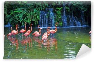 Fototapeta Winylowa Różowe flamingi na jezioro z wodospadami w rainorest.