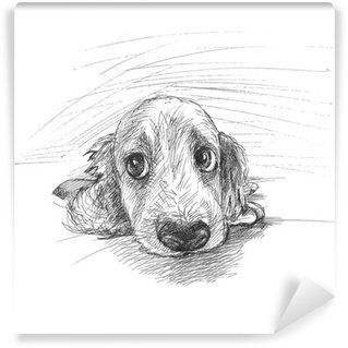 Vinylová Fototapeta Roztomilé štěně skica