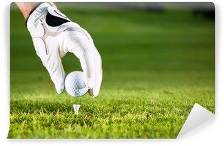 Vinylová Fototapeta Ruka držící golfový míček na golfovém hřišti s čajem