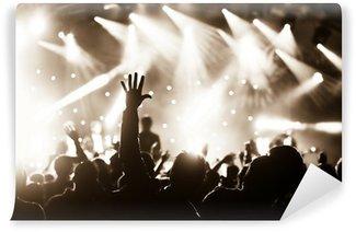 Vinylová Fototapeta Rukama zdviženýma do davu u živé hudby koncert