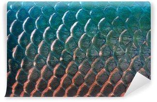 Fototapeta Winylowa Ryby skala tekstury dla tła, kolorowe koncepcji