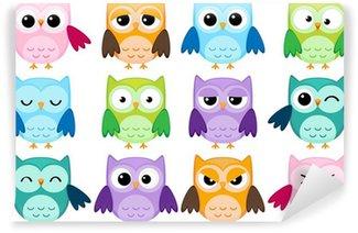 Vinylová Fototapeta Sada 12 kreslených sov s různými emocemi
