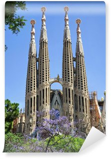 Vinylová Fototapeta Sagrada Family - Barcelona / Španělsko