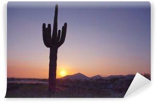 Vinylová Fototapeta Saguaro Catus při západu slunce