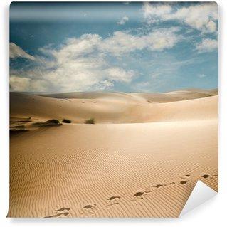 Vinylová Fototapeta Sahara duny