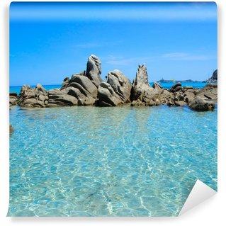 Vinylová Fototapeta Sardinie moře