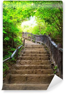 Fototapeta Winylowa Schody do lasu