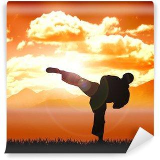 Vinylová Fototapeta Sériová ilustrace tréninku karate
