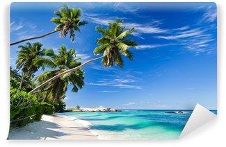 Vinylová Fototapeta Seychely pláž kokos