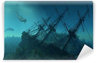 Vinylová Fototapeta Shipwreck Pod moře - 3d render