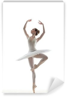 Vinylová Fototapeta Sillhouette baleríny