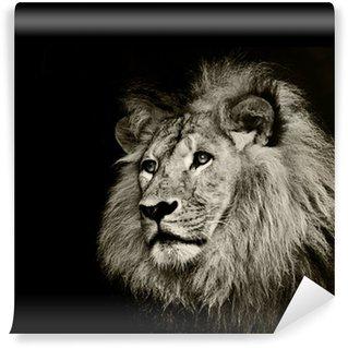 Vinylová Fototapeta Silný lev