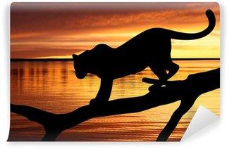 Vinylová Fototapeta Silueta leoparda na větvi na pozadí západu slunce