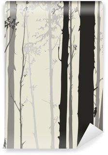 Vinylová Fototapeta Silueta z lesa
