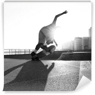 Vinylová Fototapeta Skateboardista koni v misce
