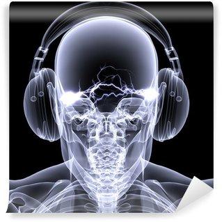 Vinylová Fototapeta Skeleton X-Ray - DJ 3