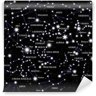 Vinylová Fototapeta Slavné souhvězdí a hvězdy na noční obloze