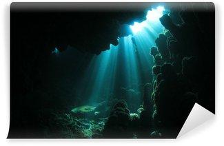Vinylová Fototapeta Sluneční světlo v jeskyni pod vodou