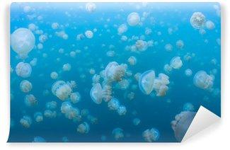 Vinylová Fototapeta Šnorchlování v jezeře medúzy, Palau