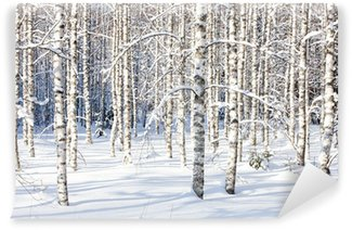 Vinylová Fototapeta Snowy bříza kufry