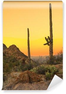 Vinylová Fototapeta Sonoran poušť na úsvitu