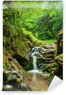 Fototapeta Vinylowa Spring Creek