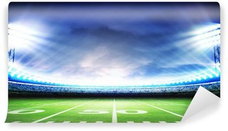 Vinylová Fototapeta Stadion american