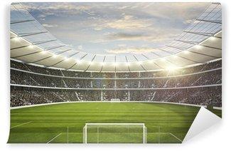 Vinylová Fototapeta Stadium 4