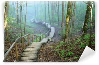 Fototapeta Winylowa Staiway w lesie w silnej mgle znikają