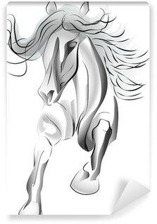 Vinylová Fototapeta Stín koně