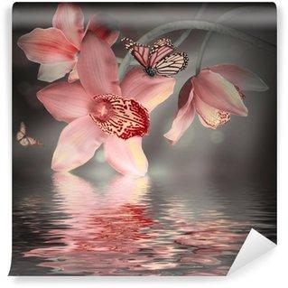 Fototapeta Vinylowa Storczyki z motylem na kolorowym tle
