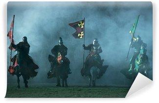 Vinylová Fototapeta Středověkých rytířů na koních