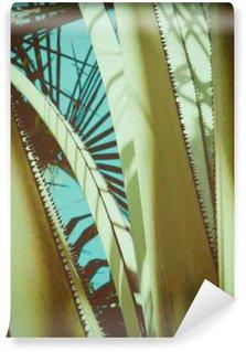 Fototapeta Vinylowa Streszczenie rocznika tle tropikalnych. Retro stonowanych. Koncepcja wakacje.