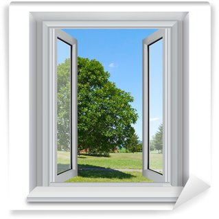 Vinylová Fototapeta Strom mimo okno