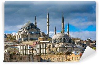 Vinylová Fototapeta Suleymaniye mešita v Istanbulu Turecko