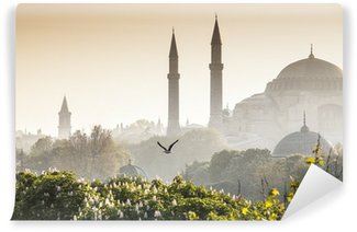 Vinylová Fototapeta Sultanahmet Camii / Blue Mosque, Istanbul, Turkey