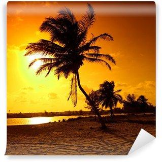 Vinylová Fototapeta Sunrise dlaň
