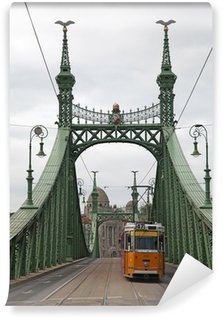 Vinylová Fototapeta Svoboda Bridge