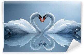 Vinylová Fototapeta Swans
