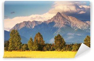 Vinylová Fototapeta Symbol Slovenska - Mount Kriváň