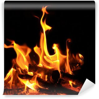 Vinylová Fototapeta Táborák, otevřený oheň, plameny, žhavé uhlíky