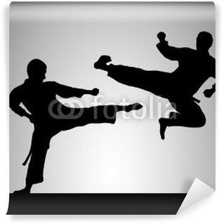 Vinylová Fototapeta Taekwondo - 1