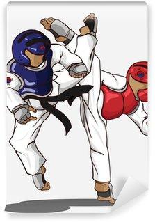Vinylová Fototapeta Taekwondo sparing. Bojové umění