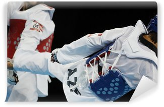 Vinylová Fototapeta Taekwondo