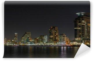 Vinylová Fototapeta Tel Aviv noční panorama