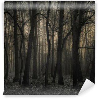 Vinylová Fototapeta The Dark Forest