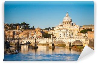 Vinylová Fototapeta Tiber a svatého Petra katedrála, Řím