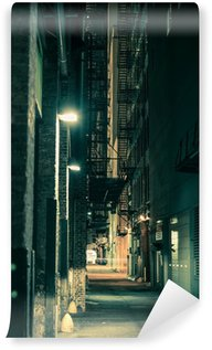 Vinylová Fototapeta Tmavě Chicago Alley