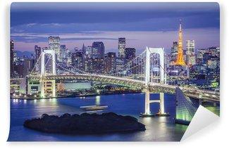 Vinylová Fototapeta Tokio, Japonsko v tokijské zátoce